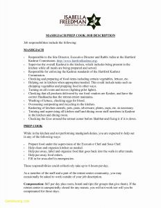 Acting Resume Template Download - Performer Resume Template Paragraphrewriter