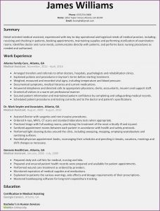 Acting Resume Template Word - Invoice Beautiful Voice Over Invoice Template Florist Awesome