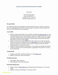 Analyst Resume Template - 23 Unique Server Resume Template
