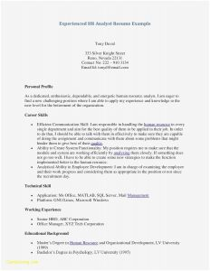 Analyst Resume Template - Informal Resume Template Awesome Free Professional Resume Samples