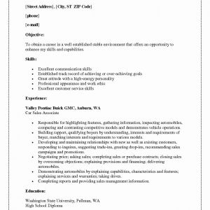 Auburn Resume Template - Examples Customer Service Resumes Beautiful Resume Customer