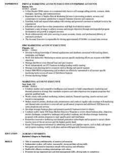 Auburn Resume Template - 62 Fresh Functional Resume Example