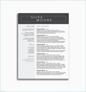Ballet Resume Template - Dance Resume Templates Ballet Resume Sample Lovely Lovely Pr Resume