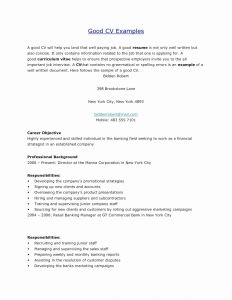 Bank Resume Template - Skills Resume Examples Luxury What to Put Resume for Skills Resume