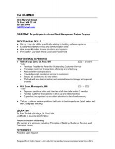 Bank Teller Resume Template - Resume Examples Bank Teller Resume Examples Pinterest