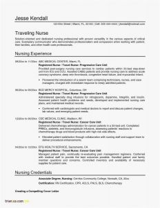 Bartending Resume Template - Bartender Resume Examples Fresh Bartending Resume Template Simple