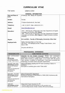 Bba Resume Template - normal Resume format Paragraphrewriter