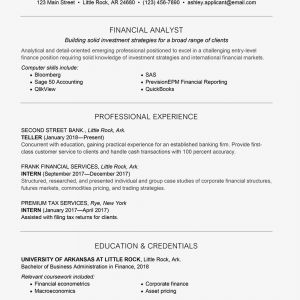 Bba Resume Template - Entry Level Finance Cover Letter and Resume Samples