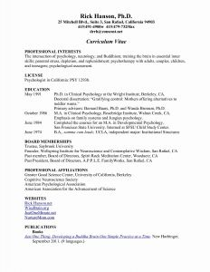 Best Resume Template Reddit - Clean Professional Resume Template Reddit