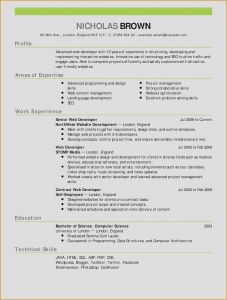 Blogger Resume Template - What to Include In A Resume New Sales Resume Examples Awesome How