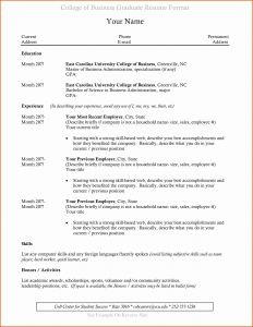 Business Administration Resume Template - social Media Resume Template Free Downloadable Flyers Templates 20