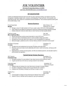 Business Manager Resume Template - 48 Standard Project Manager Resume Templates