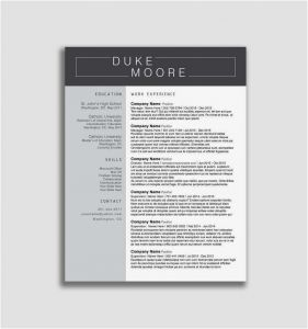 Career Builder Resume Template - Career Builder Resume Free Career Builder Resume Create Your Own
