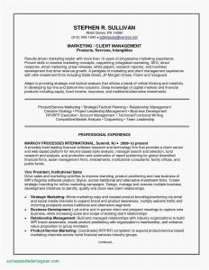 Case Manager Resume Template - Case Manager Resume Inspirational social Worker Resume Templates