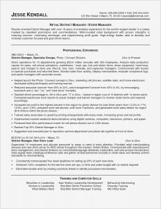 Cashier Resume Template - Professional Cashier Resume Unique Resume Examples for Retail