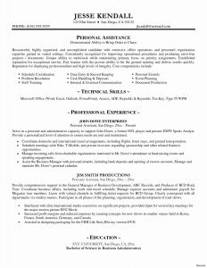 Ceo Resume Template - Resume Word Template New Best Pr Resume Template Elegant Dictionary