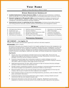 Ceo Resume Template - Executive Resume Templates Unique Sample Ceo Resume Sales Executive