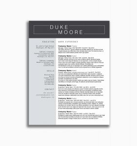 Chemist Resume Template - Visual Resume Templates Lovely Chemistry Resume Template Elegant Pr