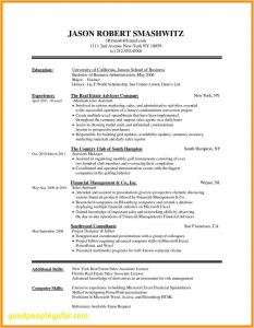 Chronological Resume Template - 46 Design Chronological Resume Samples