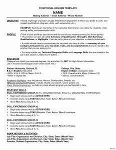 Chronological Resume Template Pdf - 46 New Blank Resume Template Pdf Resume Templates Ideas 2018
