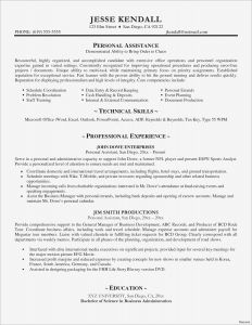 Cio Resume Template - Marketing Director Resume Luxury Best Examples Resumes Ecologist