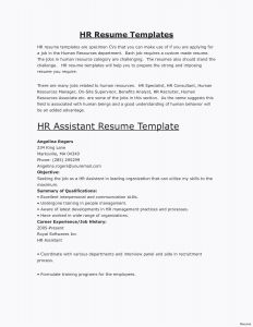 Cio Resume Template - Administrative Manager Resume Unique Cio Resume Sample Unique Best