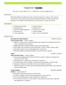 Cio Resume Template - Cio Resume Best Sample Cio Resumes Save Copy A Resume Sample