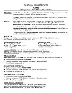 Combination Resume Template for Stay at Home Mom - Chronological Resume Template Word Unique Bination Resume Template