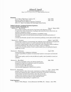 Combination Resume Template for Stay at Home Mom - Stay at Home Mom Sample Resume Refrence Awesome Stay at Home Mom