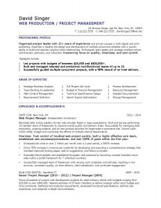 Construction Manager Resume Template - 46 Inspirational Program Manager Resume Sample