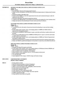 Consultant Resume Template - Consulting Resume Examples Luxury Consulting Resume Examples Exotic