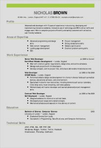 Controller Resume Template - 20 Fresh Resume Template Professional Free Resume Templates