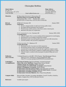 Controller Resume Template - Document Controller Resume Sample
