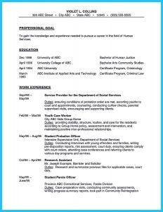 Correctional Officer Resume Template - Court Ficer Resume Dscmstat Dscmstat