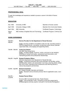 Correctional Officer Resume Template - Correctional Ficer Resume Examples Correctional Ficer Job