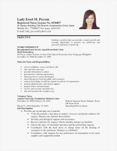 Custodian Resume Template - 48 Standard Free Professional Resume Templates