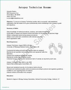 Dating Resume Template - Examples A Cover Letter for A Resume Cover Letter Resume Template