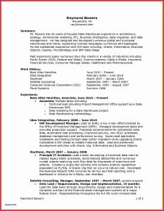 Director Resume Template - Manager Resume Examples Valid It Director Resume Great Best Examples