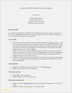 Director Resume Template - Sample Library Director Resume New Awesome Free Professional Resume
