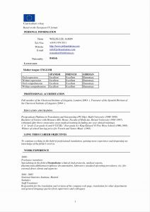 Dj Resume Template Download - Dj Resume Template Download Elegant Professional Resume Templates