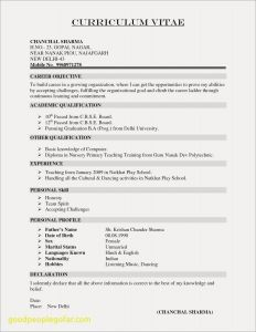 Ee Resume Template - Cv Resume Example Doc Valid Resume Template Doc New Resume Doc 0d