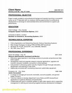 Entry Level It Resume Template - Entry Level Help Desk Resume Lovely Entry Level It Resume Unique New