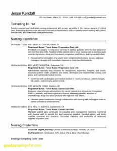 Entry Level Nurse Resume Template - Entry Level Nursing Resume Elegant Best Pr Resume Template Elegant