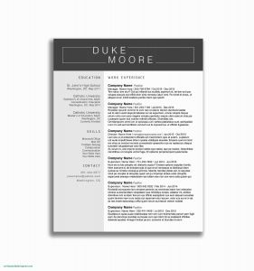Etsy Resume Template - Unique Cv Template 2 Pages New Cover & Resume Template