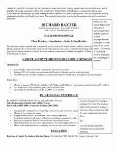 Executive Hybrid Resume Template - Bination Resume Examples Awesome Bination Samples Sample within