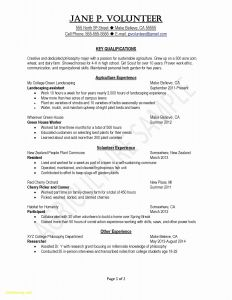 Executive Hybrid Resume Template - Hybrid Resume Template – Hybrid Resume Template Unique S Media Cache