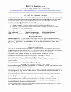 Executive Hybrid Resume Template - 68 Lovable Bination Resume Template Free Occupylondonsos