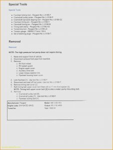Film Resume Template Word - Basic Resume Template for High School Graduate – 43 Luxury High