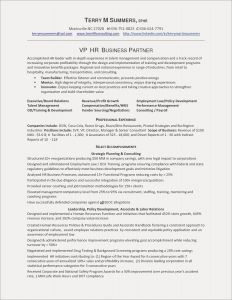 Financial Advisor Resume Template - Financial Advisor Resume Example Popular Elegant Resume Template