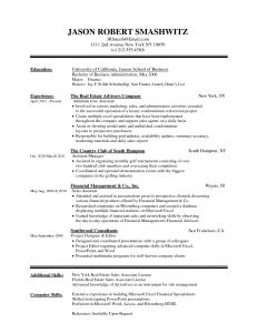 Financial Advisor Resume Template - Resume Microsoft Word Unique Best Federal Government Resume